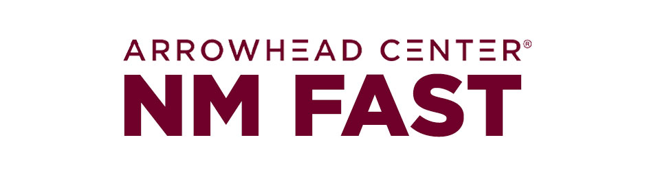 Arrowhead NM Fast